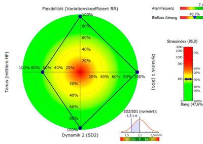 grafik-hrv-analysergebnis-stoffwechsel-zentrum-germering-vitalitaet-leistungsfaehigkeit-ernaehrung-wurzelenergie-stoecker-muenchen